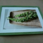 Store bought frame I was asked to transform - Before